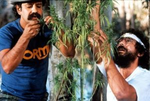Cheech-Chong-Nice-Dreams