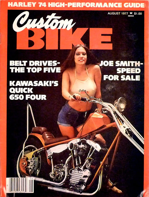 custom bike cover 1977