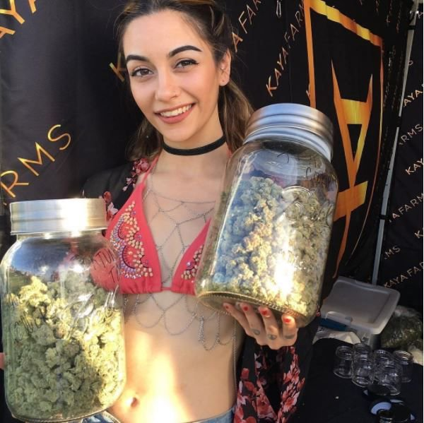 weed cutie with big jars of weed pretty pothead